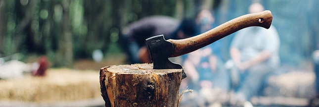 Des AMAP pour le poisson, le bois et même pour la culture