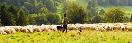 Luttes paysannes: la mobilisation continue
