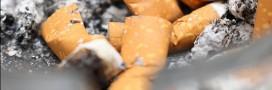 Interdiction de fumer sur les plages : qu'en pensez-vous ?