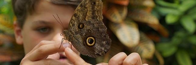 Une journée pour la biodiversité : et les 364 autres ?