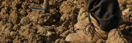 L'agro-écologie séduit de plus en plus les agriculteurs français