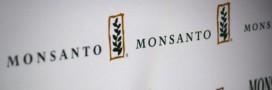 Bayer et Monsanto pourraient bientôt ne faire plus qu'un?