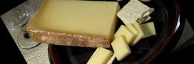 Albertville produit désormais son électricité à partir de fromage
