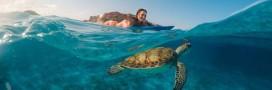 10 photos d'expériences naturelles incroyables, qui risquent de ne plus être possibles