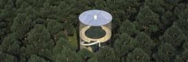 Bientôt, une maison en verre pour vivre dans un arbre!