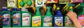 Roundup: l'Europe prolonge l'autorisation de vente de l'herbicide polémique