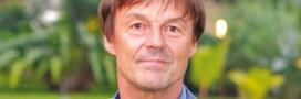 Présidentielle: si Nicolas Hulot jette l'éponge, qui parlera environnement?