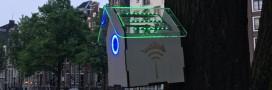 TreeWifi: le nichoir à oiseaux qui fait borne wifi quand l'air est bon