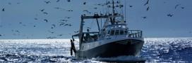 Ressources halieutiques: la pêche en eaux profondes interdite en Europe