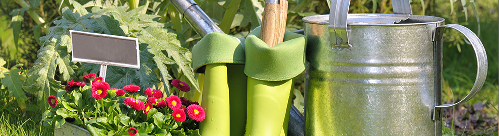 Jardiner en été