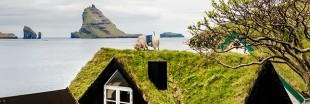 Aux îles Feroé, ce sont les moutons qui prennent des photos