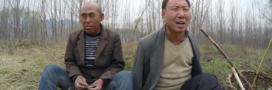 Un non-voyant et son ami manchot plantent une forêt en Chine