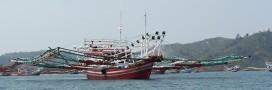 Pêche illégale: l'Indonésie va couler les bateaux des tricheurs