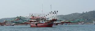 Pêche illégale : l'Indonésie va couler les bateaux des tricheurs