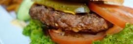 Rappel produits: steaks hachés bio