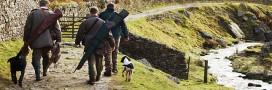 Biodiversité: la région  Auvergne-Rhône-Alpes privilégie les chasseurs