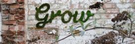 Les plus belles oeuvres de street art écolo
