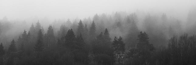 Êtes-vous touchés par la dépression saisonnière hivernale ?
