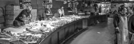 Étiquetage alimentaire : le poisson à nouveau épinglé