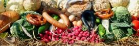 Gaspillage alimentaire: 800.000 euros pour les associations