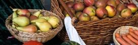 Banques alimentaires : 24 millions de repas vont être distribués aux plus démunis