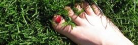 Faire l'amour avec la Terre: l'étrange penchant des écosexuels