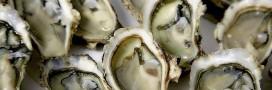 Réveillon. Choisir et consommer ses huîtres