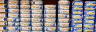 95 % des ménages français achètent des conserves