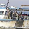 Pour l'association Bloom, le label MSC certifie une pêche destructrice