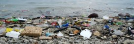Le projet de quadrimaran Sea Cleaners a le vent en poupe
