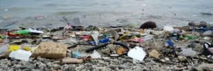 Le projet de quadrimaran Sea Cleaner a le vent en poupe