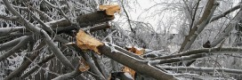 Météo : tempête Egon et vague de grand froid