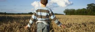 France : l'agriculture biologique gagne du terrain