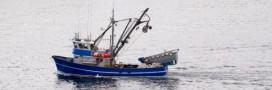 Pêche: la Banque mondiale prône une réforme en profondeur