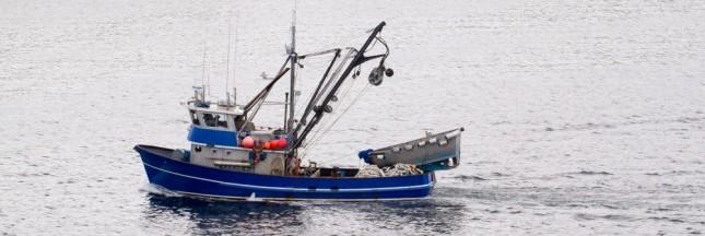 Pêche : la Banque mondiale prône une réforme en profondeur