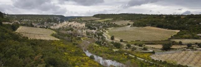 Hérault: l'urbanisation trop rapide réduit les terres agricoles