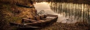 Sélection livre : 'La mémoire des étangs et des marais'