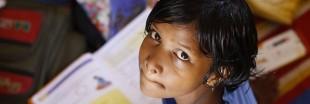 Scandale en Inde : des travaux scolaires pour apprendre comment étouffe un chaton