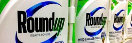 Glyphosate: les citoyens européens lancent une pétition pour l'interdire