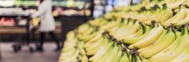 Gaspillage: un supermarché allemand ne vend que des produits 'à jeter'