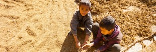 L'agriculture n'exploite pas que la terre, mais aussi les enfants !