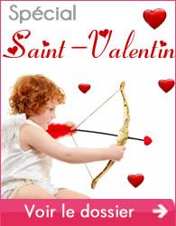dossier-saint-valentin-banniere