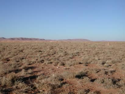 zone aride