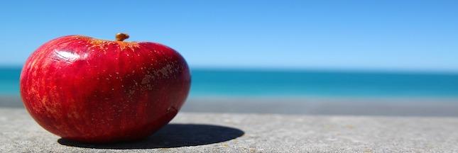 La pomme, un fruit pas si défendu (1)