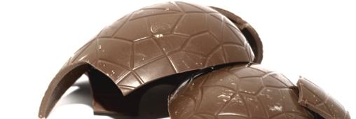 Le chocolat bio,