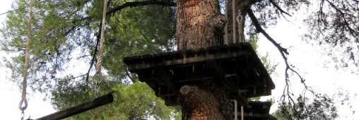 Tourisme Vert. Dormir dans une cabane