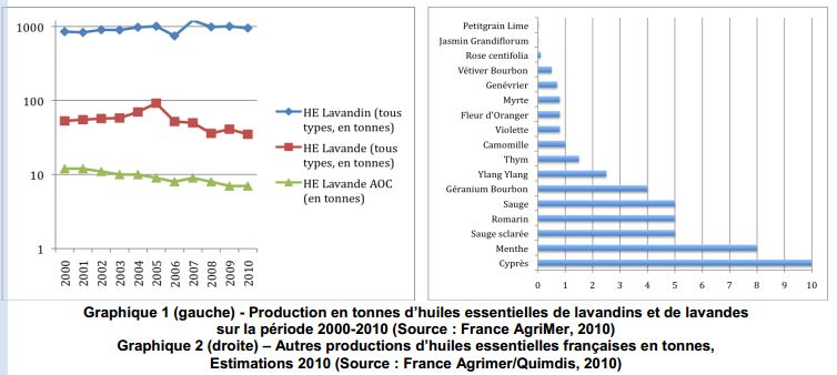 production-huiles-essentielles-france