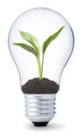 conseil écologique
