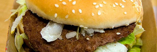 Ces substances que nous cache... le Big mac !