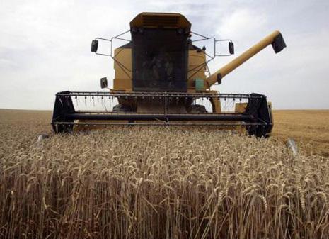 croissance demographique-recolte-agriculture